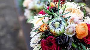 yuli josh wedding wonderland weddings