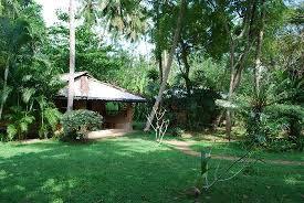 surya garden guesthouse the garden with bungalows
