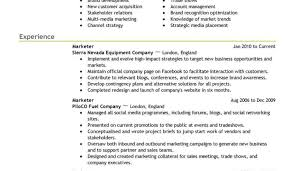 Stylish Resume Templates For Microsoft Word Tags Resume Maker