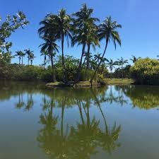 erika shank of amagansett n y recently visited florida and shared these images from the fairchild tropical botanic garden just south of miami