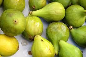 What The Fig Cuesa