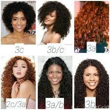 Hair Type Chart Shows Textures 2c 3c Hairinfo Hairtype
