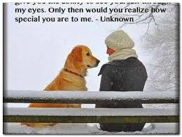 Love My Dog Quotes Fascinating I Love My Dog Quotes Best Best 48 Love My Dog Ideas On Pinterest