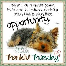Thursday Inspirational Quotes Gorgeous Thankful Thursday Inspirational Quote Pictures Photos And Images