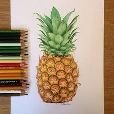pineapple drawing tumblr. pin drawn fruit pinter #6 pineapple drawing tumblr s