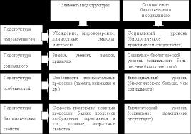 Личность ее структура и проявления Рефераты ru Иерархическая структура личности К К Платонов