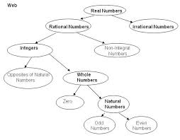 Real Numbers Venn Diagram Worksheet Best Photos Of Real Numbers Venn Diagram Complex Number