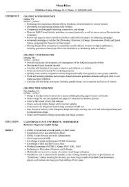 Web Designer Resume Graphic Web Designer Resume Samples Velvet Jobs 49