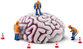 Image result for cartoon brain