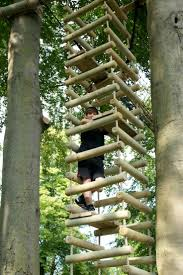 Cool Treehouses For Kids Kids Tree House Kits Home Design Ideas