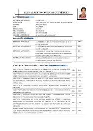 Magnificent Formato Curriculum Vitae Filetype Doc Photos Example