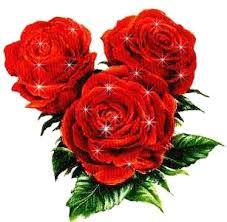 """Résultat de recherche d'images pour """"images de roses d'amour"""""""