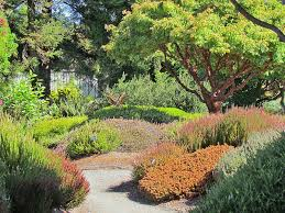 Small Picture California School of Garden Design Thoughts and Ramblings from