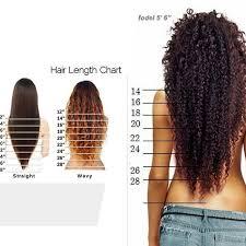 Curly Hair Length Chart