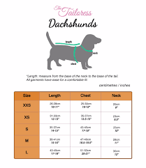 Dachshund Size Chart Dachshund Sizes Charts Goldenacresdogs Com