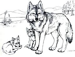 Small Picture Printable Free Wolf Coloring Pages For Adults Animal Coloring