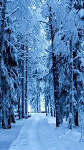 snow forest blue ice android wallpaper thumbnail