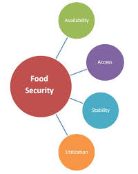 best world food security images food security  food security