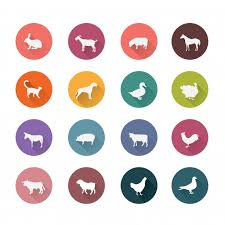 Animal Icon Animal Icons Collection Vector Free Download