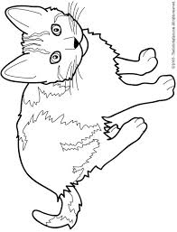 Cat Coloring Pictures Cat Color Pages Printable Cat Free Printable