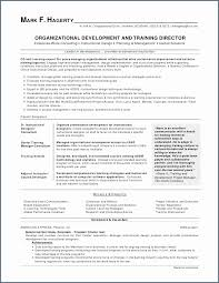 Director Of Nursing Resume Amazing Marketing Director Resume Present Nursing Resume Writing Sierra 48