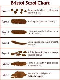 Stool Odor Chart Evaluating 5 Qualities Of Poop To Determine Your Health And Diet