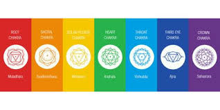The Real Science Behind Chakras - L'Aquila Active