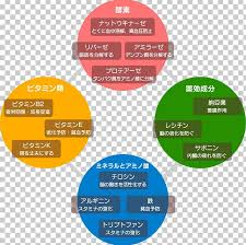 Pie Food Chart