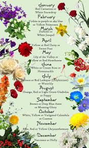 Birth Flower Chart Discover The Birth Month Flowers And Flower Meanings Here