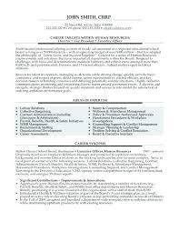 Vice President Resume Samples Vice President Resume Samples Acepeople Co
