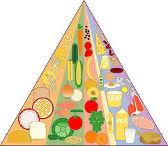 Food Group Pyramid Chart New Food Pyramid Chart Stock Vector Illustration Of Diet
