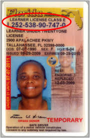 License Id Information Driver's Card And Florida