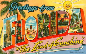 Florida Quotes Simple Quotes About Florida Adorable 48 Fantastic Car Insurance Quotes