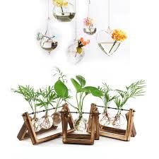 creative wooden stand glass terrarium container hydroponics planter flower pot tabletop vase diy home office wedding decor white flowers in vase white glass