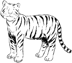 Small Picture Tiger Coloring Pages coloring pages Pinterest Tigers