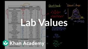 Introduction To Lab Values And Normal Ranges Video Khan Academy