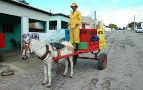 Resultado de imagem para foto do projeto de reciclagem em carnaubais