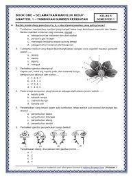 Pilihlah jawaban yang paling tepat! Contoh Soal Uas Plh Kelas 6 Semester 1 Dan Kunci Jawaban Revisi Ops Sekolah Kita