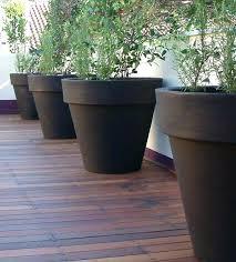 large outdoor pots nz giant pot plants planter
