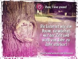 Die Liebe Ist Wie Ein Baum Sie Wächst Mit Der Zeit Und Wird Von