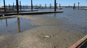 Puget Sounds Lowest Tides Of The Year Are Causing Headaches