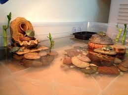 Turtle Tank Decor 17 Best Ideas About Turtle Tanks On Pinterest Pet Turtle Turtle