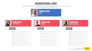 Web Organization Chart Organizational Chart Power Point Presentation By Rasignature