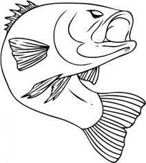 Small Picture Bass Fish Realistic Coloring Pages Coloring Pages Pinterest