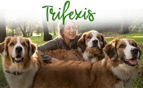 trifexis without vet prescription. Exellent Vet Trifexis At Costco On Trifexis Without Vet Prescription