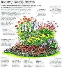 zone 8 flowers zone 3 garden plans