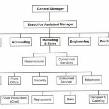 Chef Position Chart Typical Hotel Organization Chart Showing The Gms Position