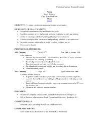 Resume Professional Summary Examples Customer Service Resume Help