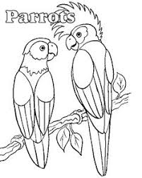 parrot coloring page coloring page