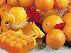 e delicious florida navel oranges shipped fresh from hale groves premium florida citrus since